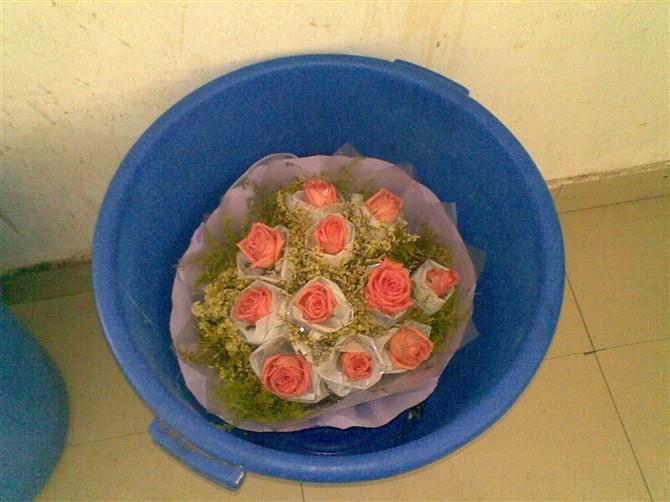 宿舍楼下拍的==垃圾桶里的玫瑰花
