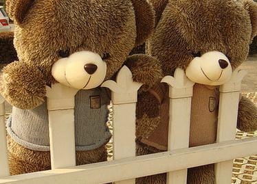 【日本代购 可爱的小熊 专拍链接】--qq_201520cc6483